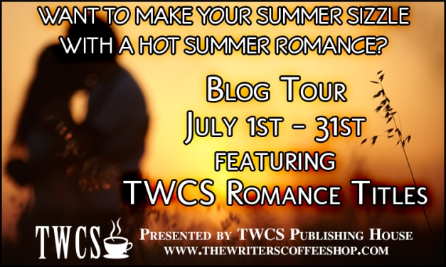 Hot Summer Romance Blog Tour - Hollywood Sins by N.K. Smith