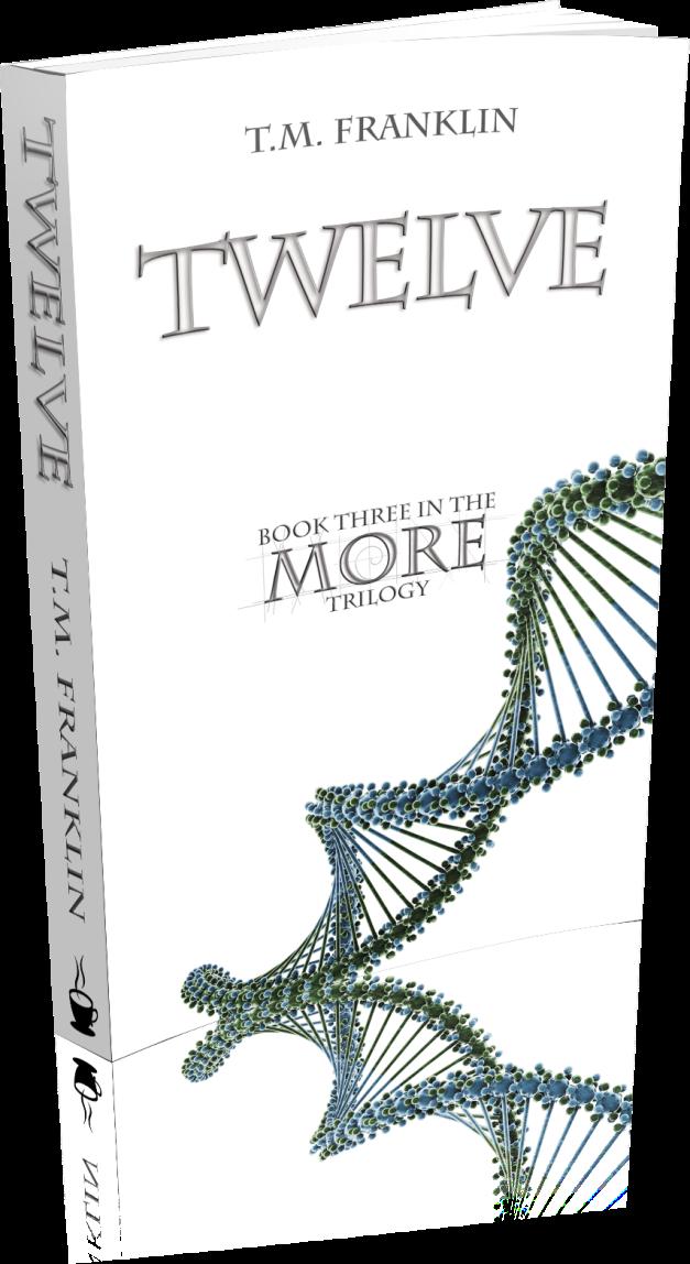 Twelve-3D-Paperback