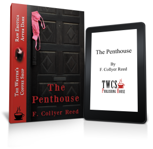 The-Penthouse-3D-Paperback-eReader